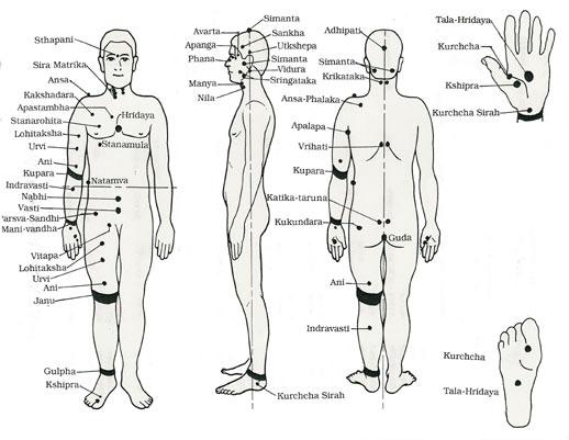 massage technique   le massage cachemirien ou kashmiri